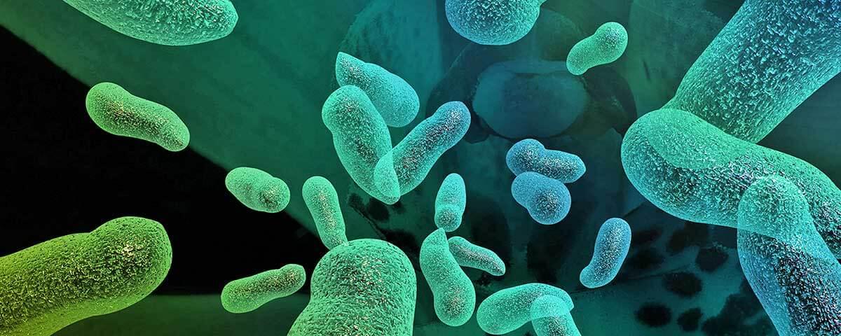 Understanding HESI A2 Biology Topics