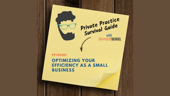 Private practice survival guide podcast cover art.
