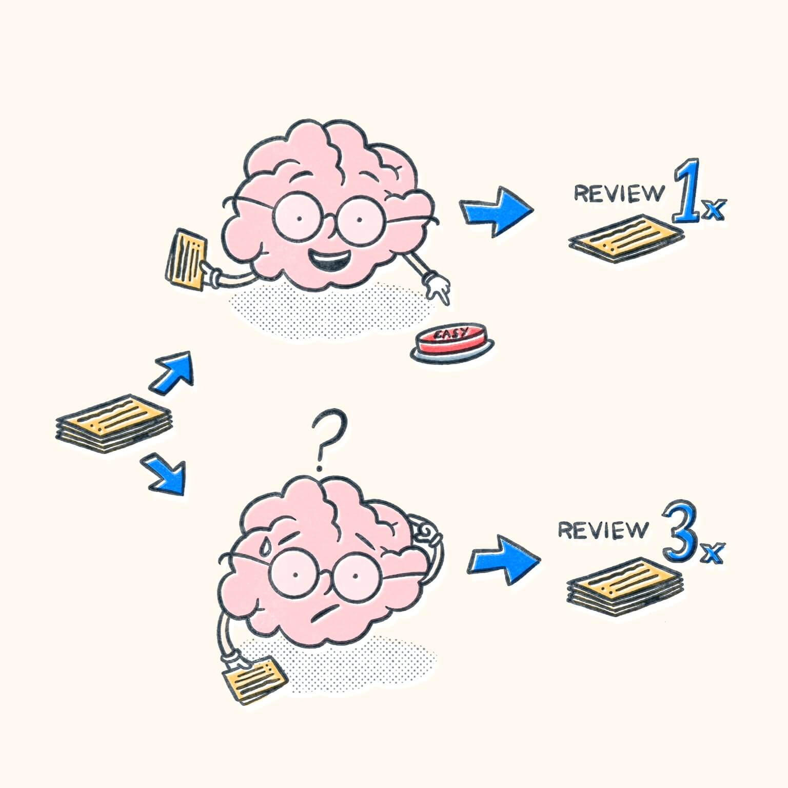 Comparison of two brains with one reviewing easy information once, and the other reviewing hard information multiple times.